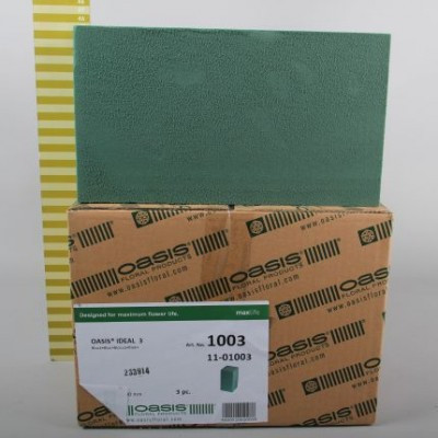 Oasis block Ideal x3 32*23*18cm