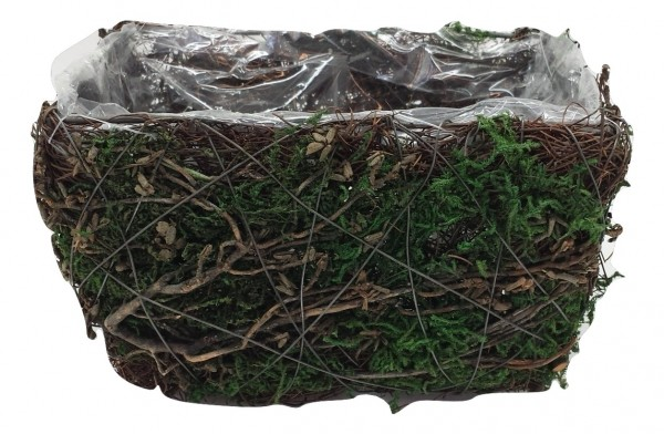 Salim Planter With Moss,Tree Branch Rectangle Na/Grn L18W12H10 Piece