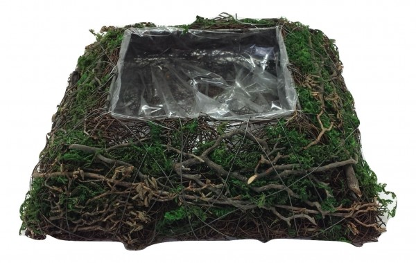 Salim Plate With Moss,Tree Branch Square Na/Grn L20W20H6 Piece