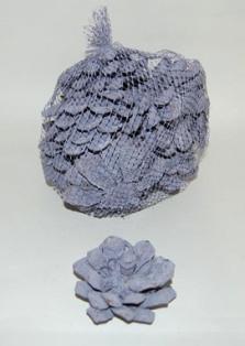 Pinus Pin. Fl. (12 Pc) Lilac