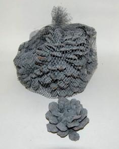Pinus Pin.Fl. (12 Pc) Grey