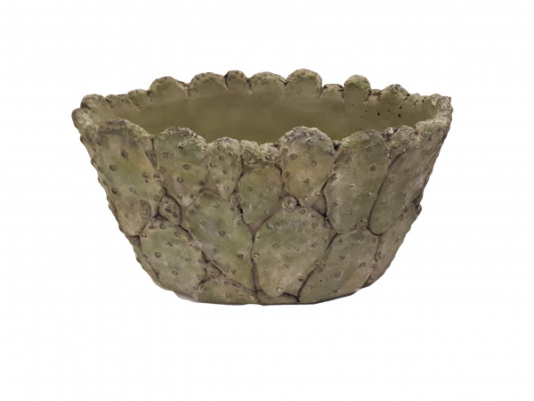 Oval Pl. Cactus L21W14H11,5