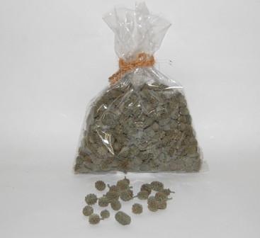 Casurina 300 Gr Green