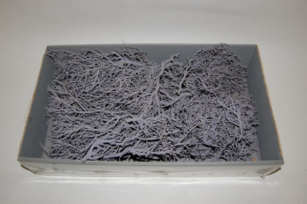 Iron Bush Pcs Lilac 750 Gr