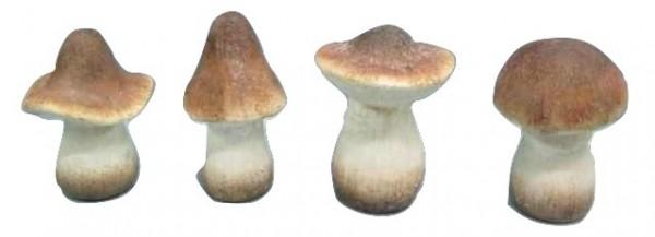 Mushroom Natural 4Ass H15