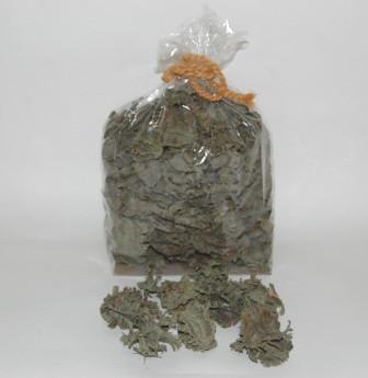 Arjun Large 300 Gr Green