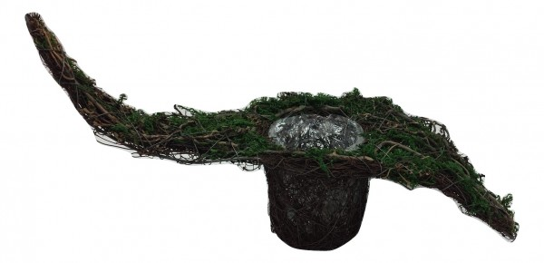 Salim Pot With Moss, Tree Branch Na/Grn L42W20H10 Piece